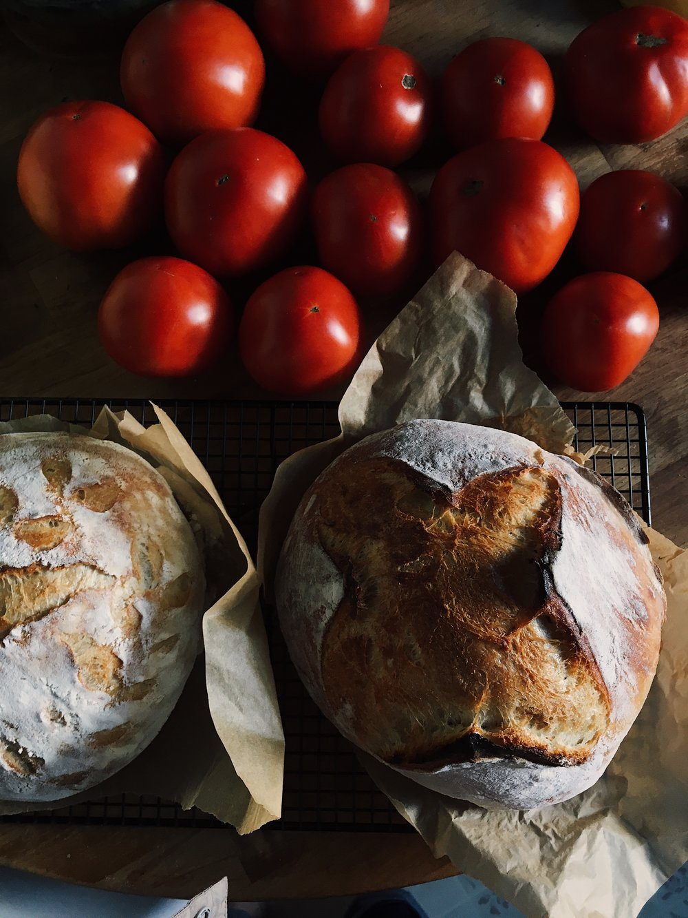 tomatoes organic sourdough bread loaves by samantha spigos