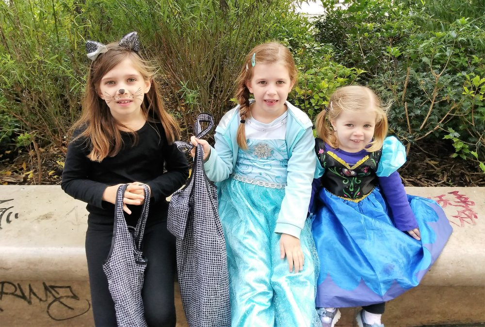 Our little black cat, Queen Elsa, and Princess Anna with their candy!