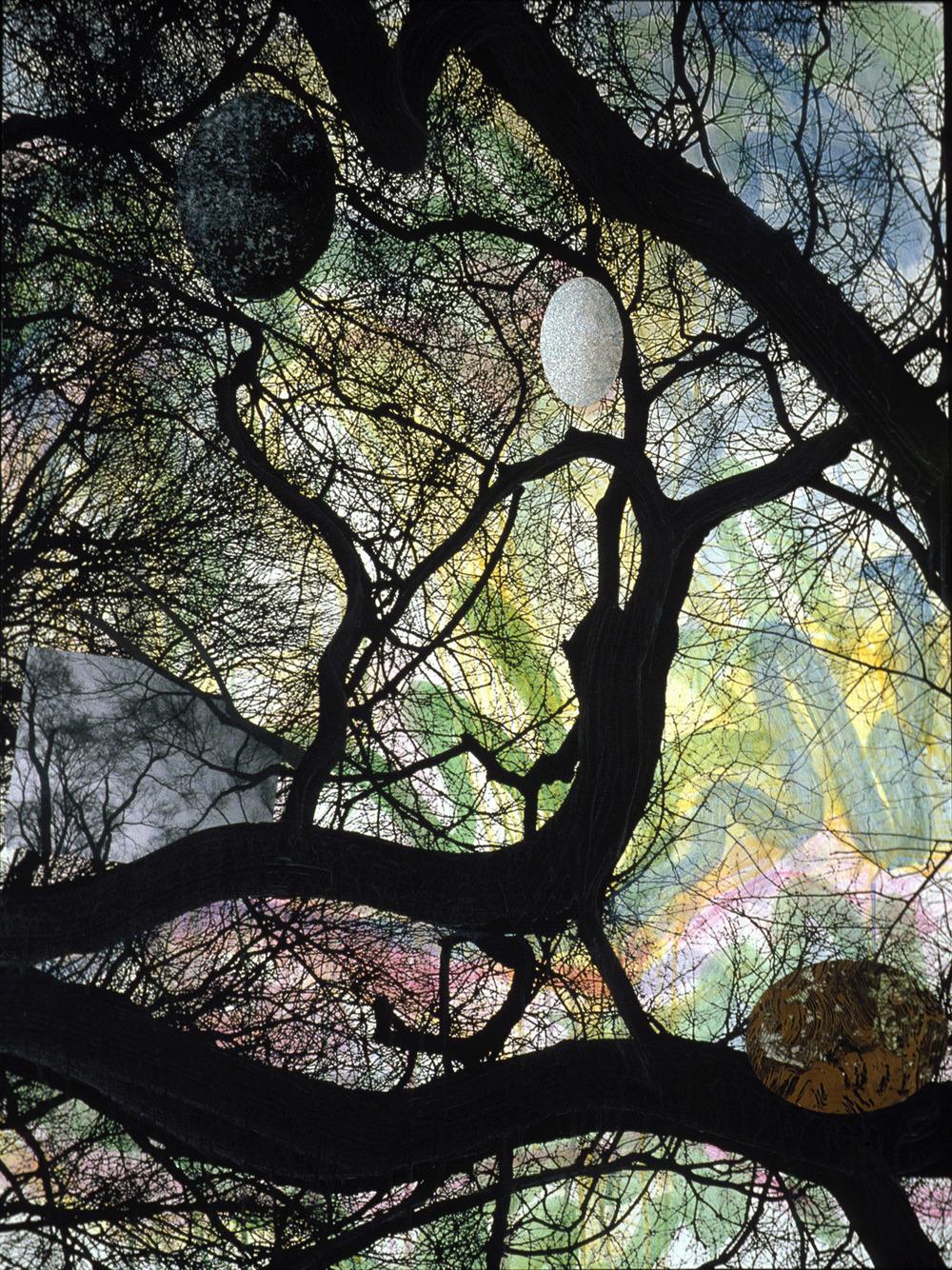 "Central Park Trees , 2006, 48 x 36 x 2"""