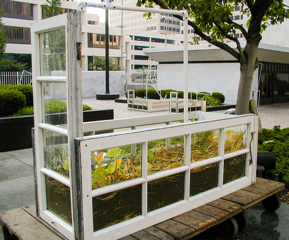 "ONE STRAW REVOLUTION , 2002.   Demonstration biointensive garden in downtown Federal Reserve Bank Plaza, for Cincinnati Contemporary Art Center, Eco-Vention exhibit, Cincinnati, OH Curators:  Amy Lipton & Sue Spaid.  Salvaged local French doors and ""3 sisters"" plants.  From Fukuoka's garden book."