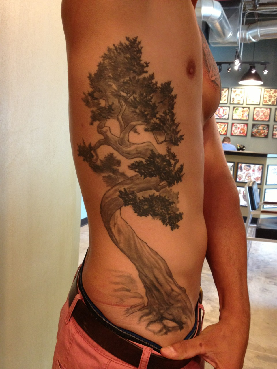 Healed pics of a tree done in one sitting last year on the road.