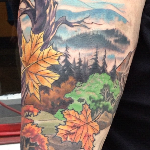 Smoky mountain sleeve (Taken with  Instagram )