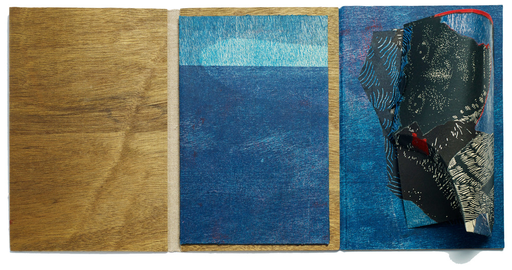 Tim Mosely  from the deep  2013. Unique artists book – single segment case bound, relief prints on awagami kozo, rainforest ply, curved folding folio. 32 x 76 cm (open).