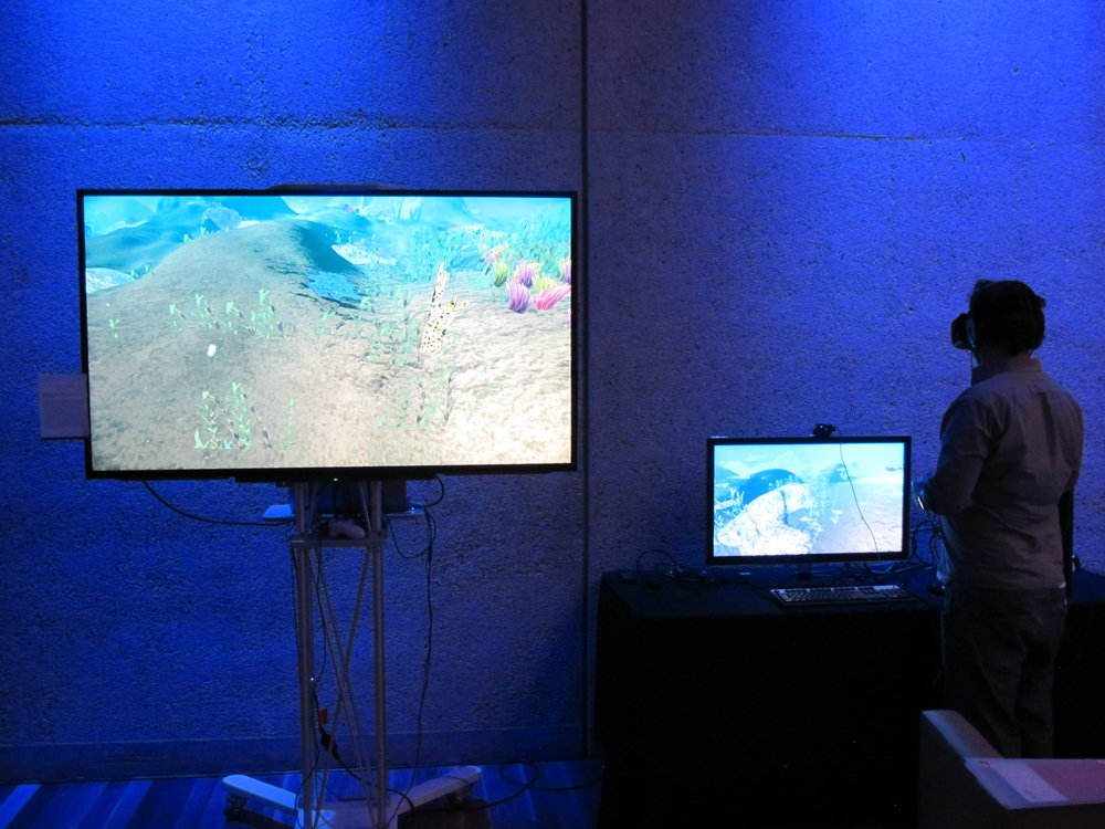VR Immersive Slow Reef Experience - Tim Marsh, Nathan Jenson, Whitney Constantine, and Elliot Miller