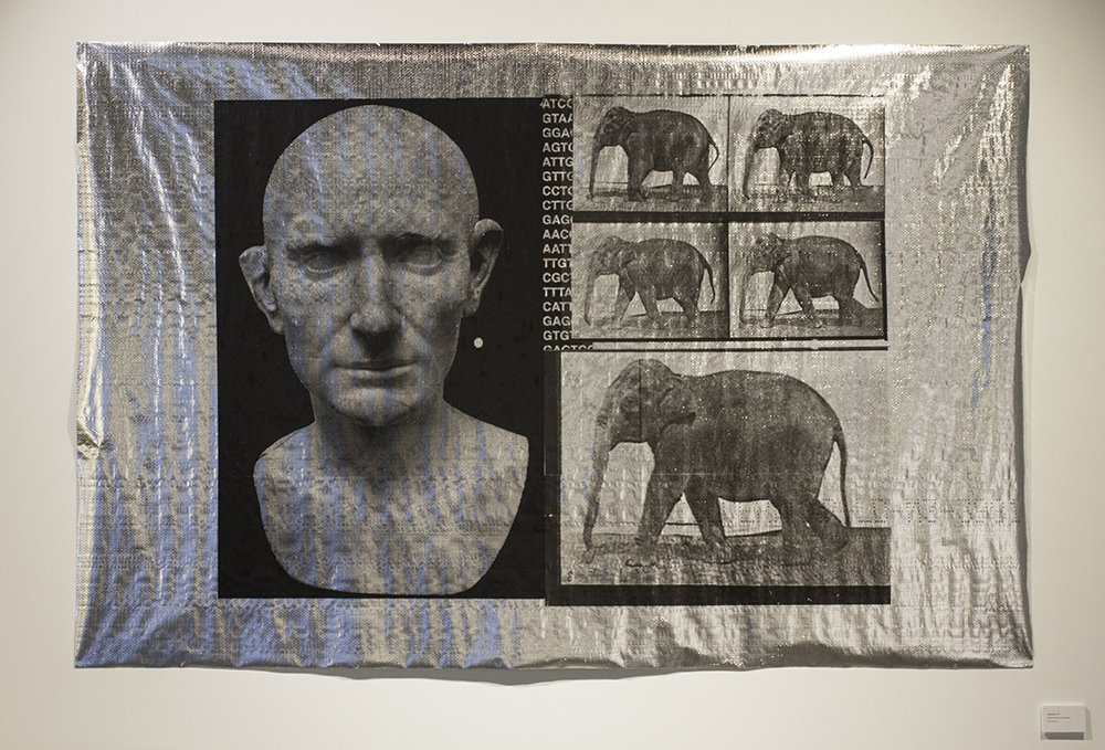 Blair Coffey Conquest 2016. Screen print on foil insulation. 135x165cm