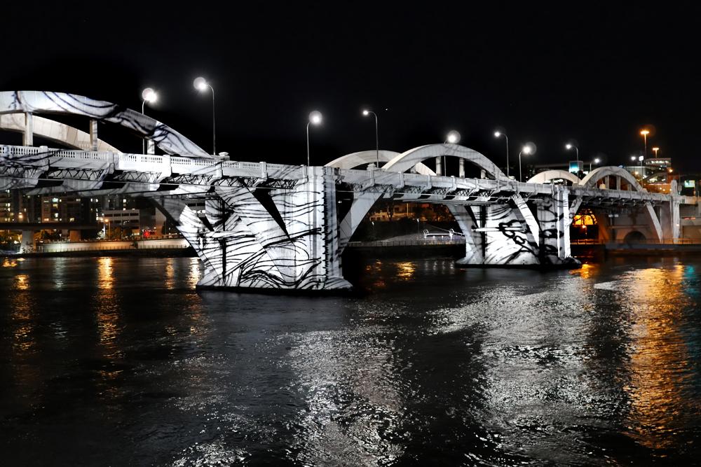 William Platz  Big Yawn—Urizen's Beard  2015. Projection on the William Jolly Bridge, Drawing International Brisbane ( DIB) 2015