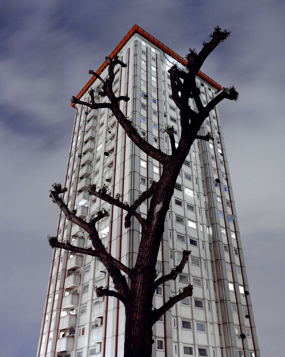 Tree & Tower mornington cresent 001 copy.jpg