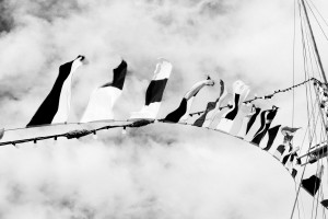 black and white boat flags