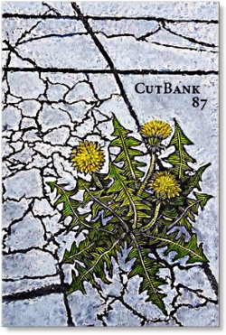 CutBank 87 -   Autumn 2017