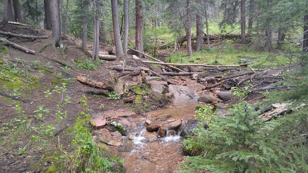 A couple nice little stream crossings
