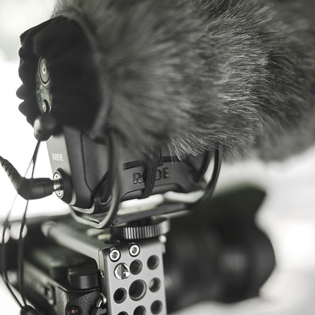 Hands down the best mic I've ever used. @rodemic hit it out the park with their videomicpro+