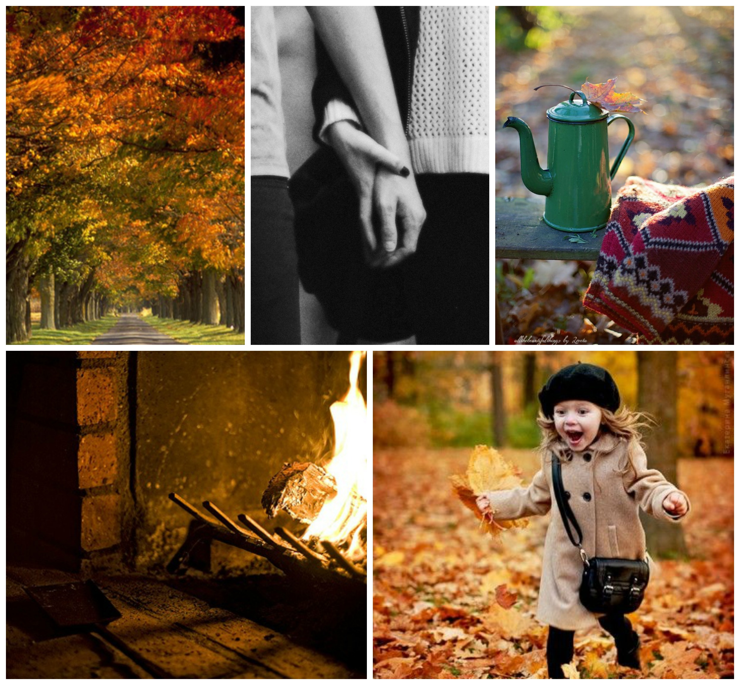 fall family collage