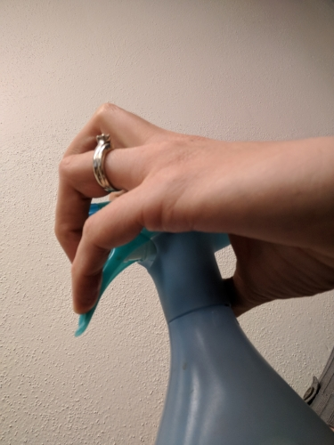 spray bottle 2.jpg