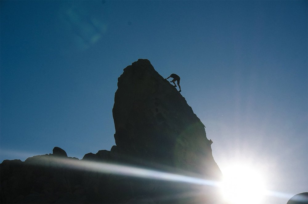 Ethan Pringle in El Capitan