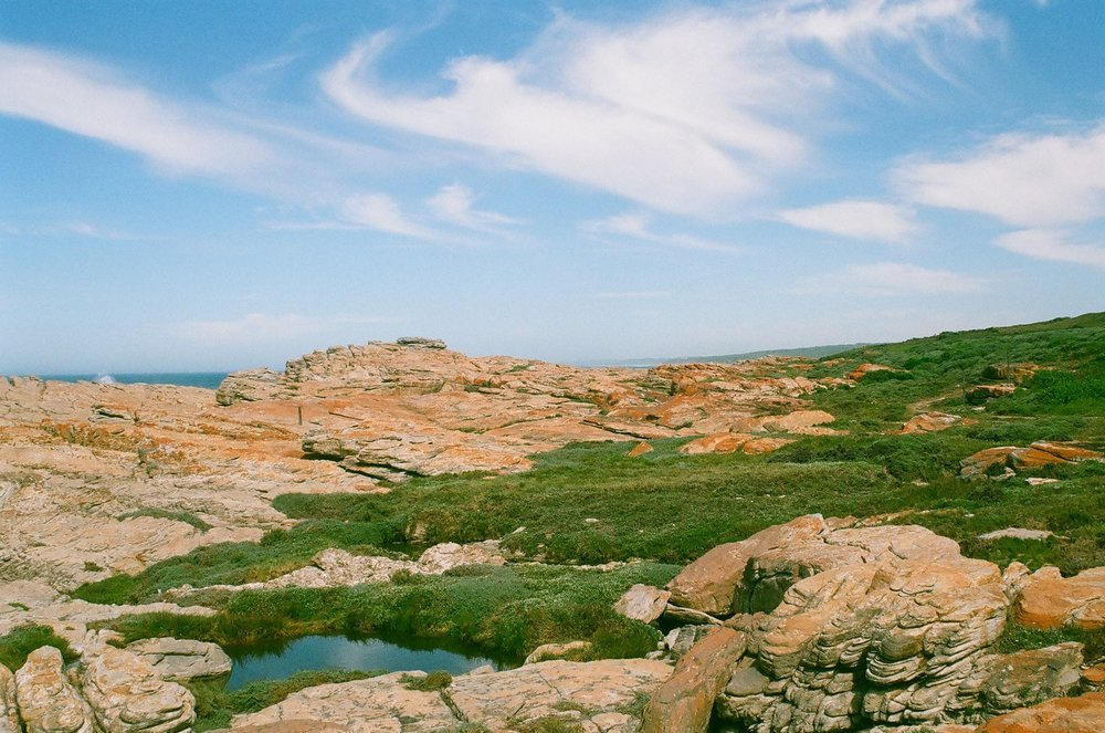 Somewhere in Cape St. Francis, a spot made famous by The Endless Summer.