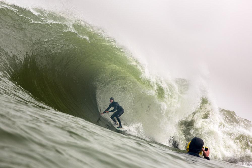 Matt Bromley inside a West Coast Giant. Credit:  Alan Van Gysen