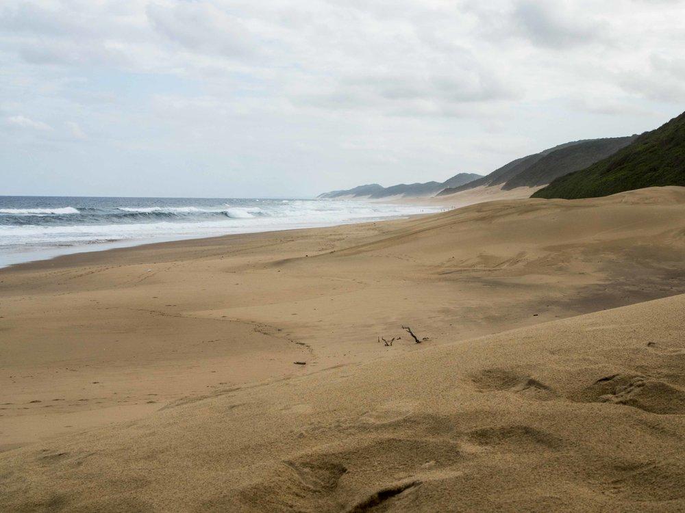 An almost deserted East Coast. Credit: George Kirkinis.