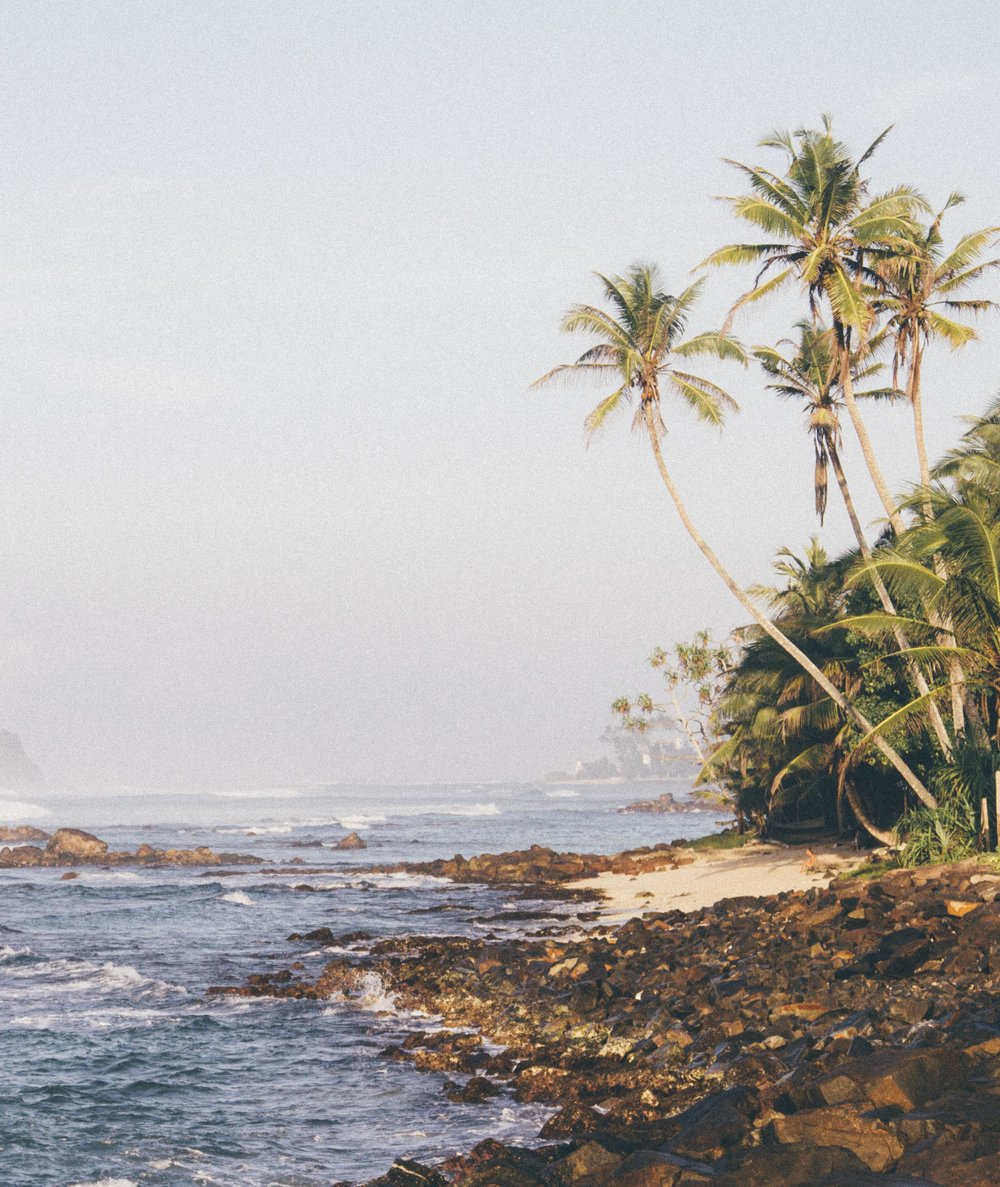 A typical beach view in Sri Lanka. Photo by Morgan Woods and Christian Quinlan