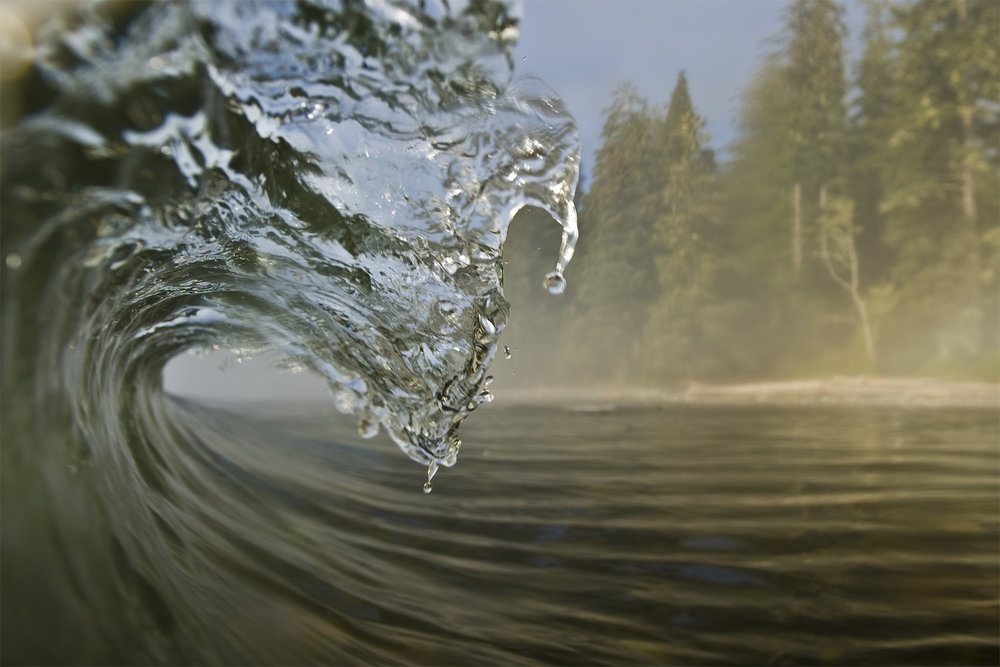 Close-up of a wave with fog in BC, Canada. Photo by Shayne Stadnick