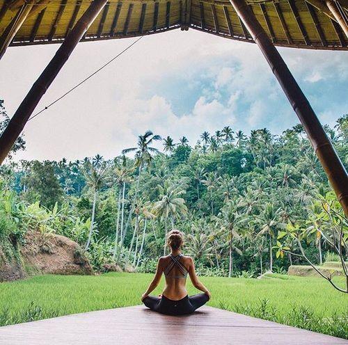 A yogi in the jungle.