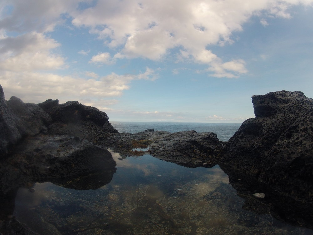 Makapu'u Tidepools