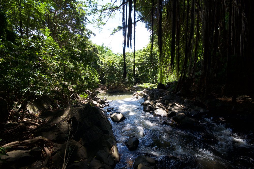 Kapena Falls Hike