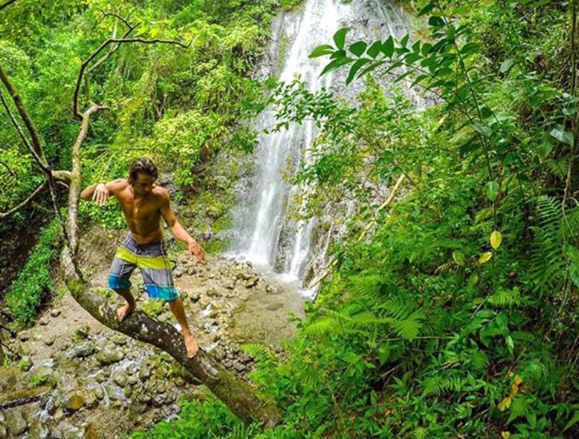Hike Hamama Falls