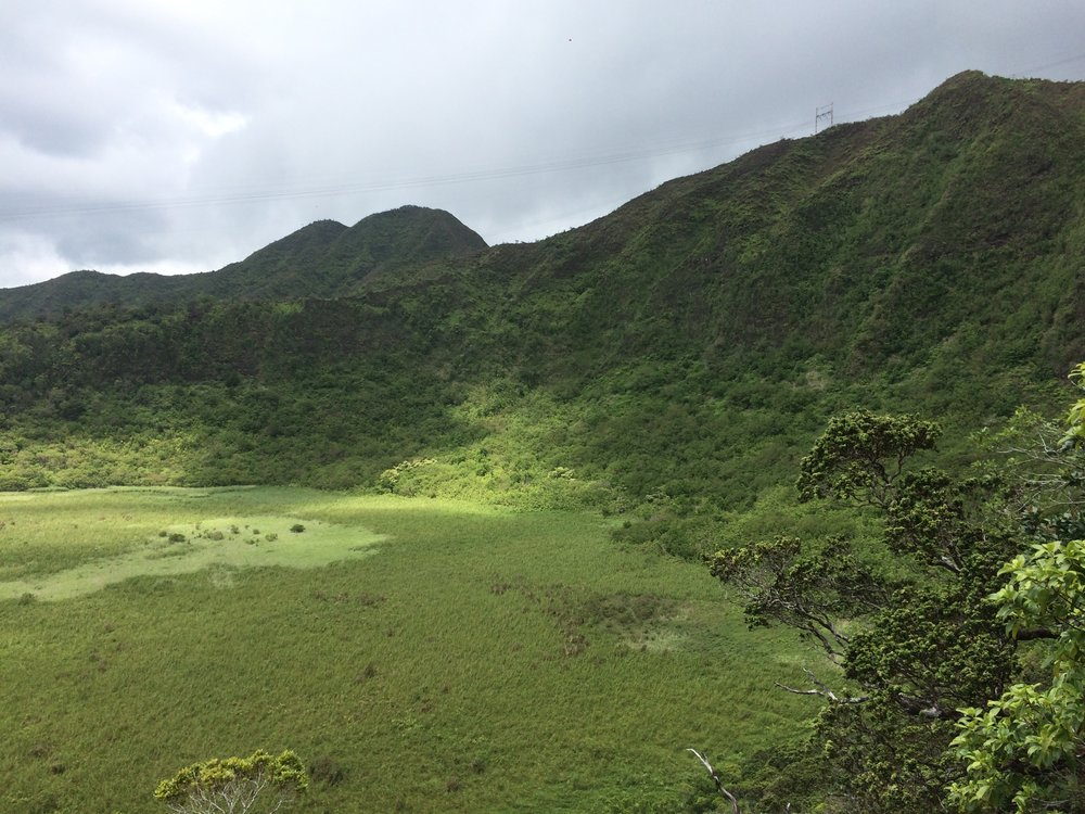 Kaau Crater Hiking