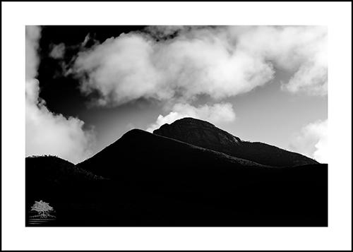 MOUNTAIN MYSTIQUE.jpg