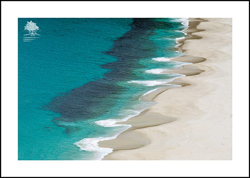 SHELLEY BEACH PATTERNS.jpg