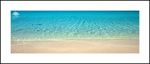 PARADISE BEACH PANO.jpg
