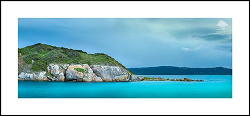 MUTTONBIRD ISLAND bettercolor.jpg