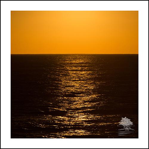 ABOVE THE OCEAN.jpg