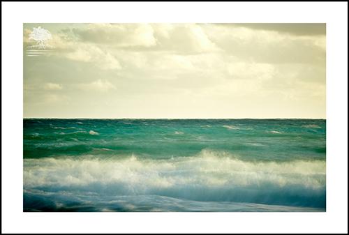 PAINTED SEA.jpg