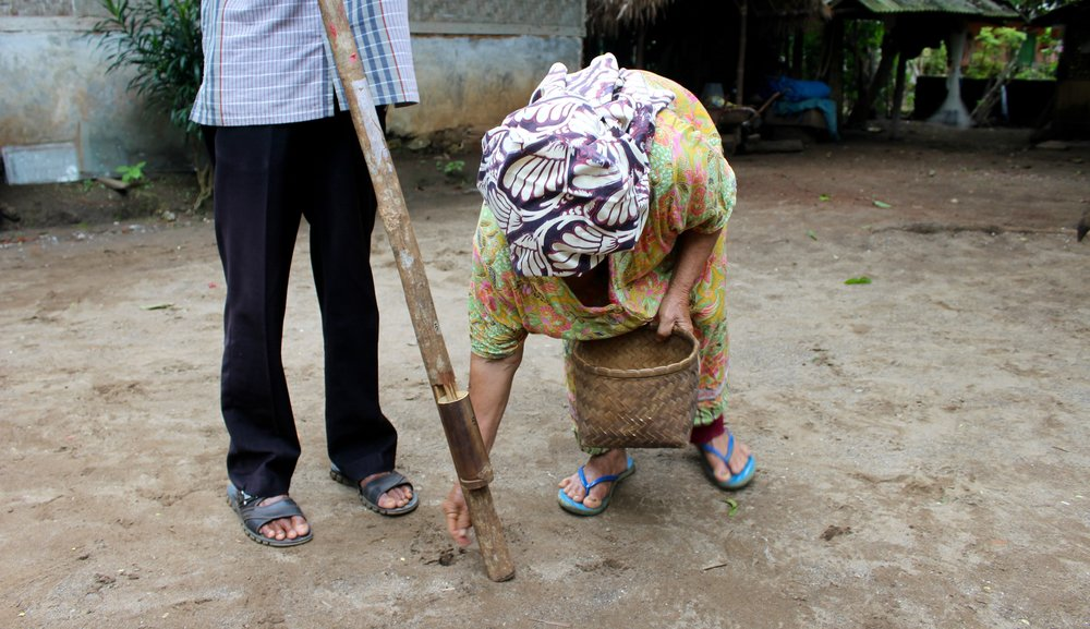 An old woman demonstrates how they used to plant the rice seeds.