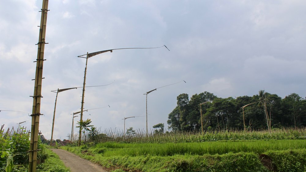 Banceuy's  kolecer  windmills line the rice paddies