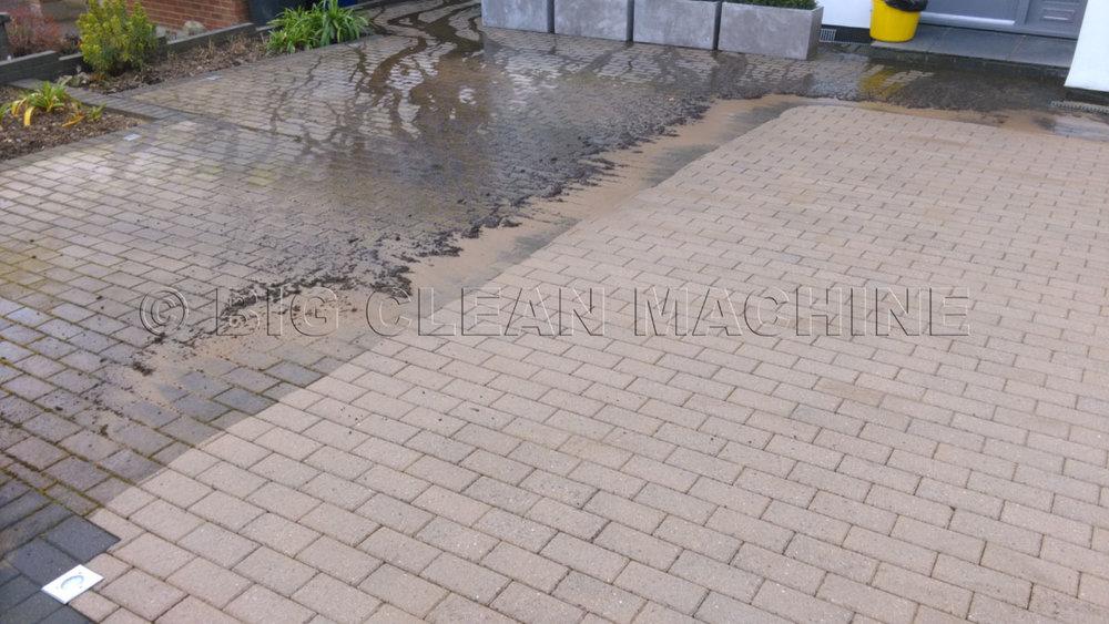 IMAG3493 Re Sized and Watermark.jpg