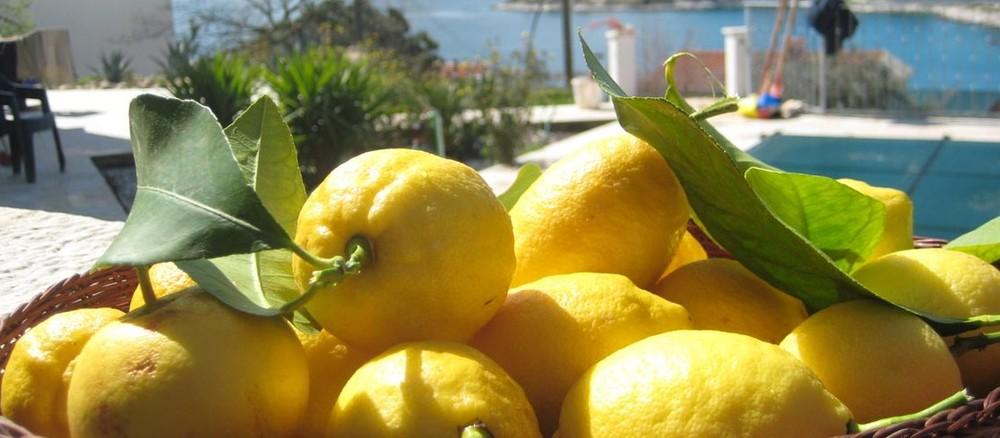 Carmen lemons.jpg