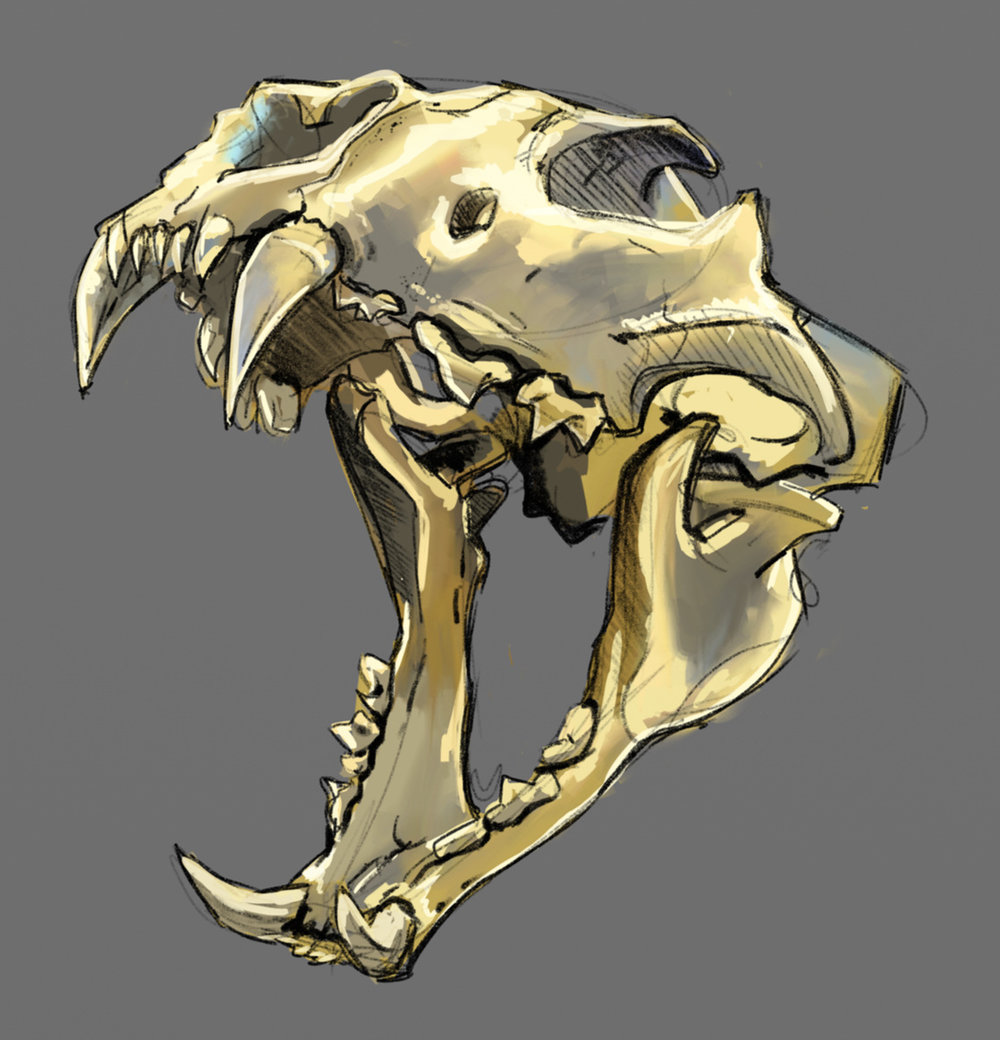 skulls_dfrnt_05.png