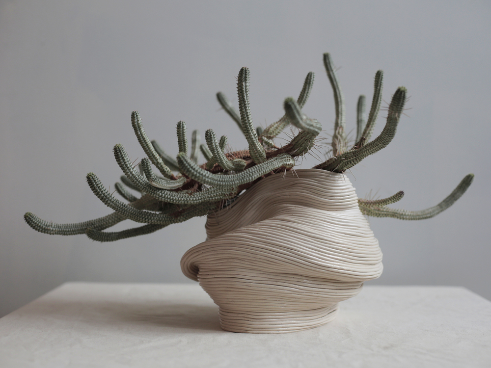 Vessel with outstretched arms,  2016.   Ceramic with Euphorbia Mammillaris variegata