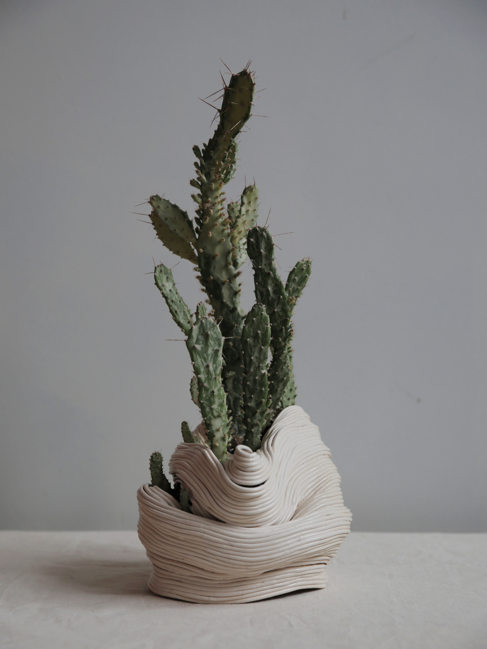 Seated vessel leaning forward,  2016.  Ceramic with Opuntia Monacantha variegata