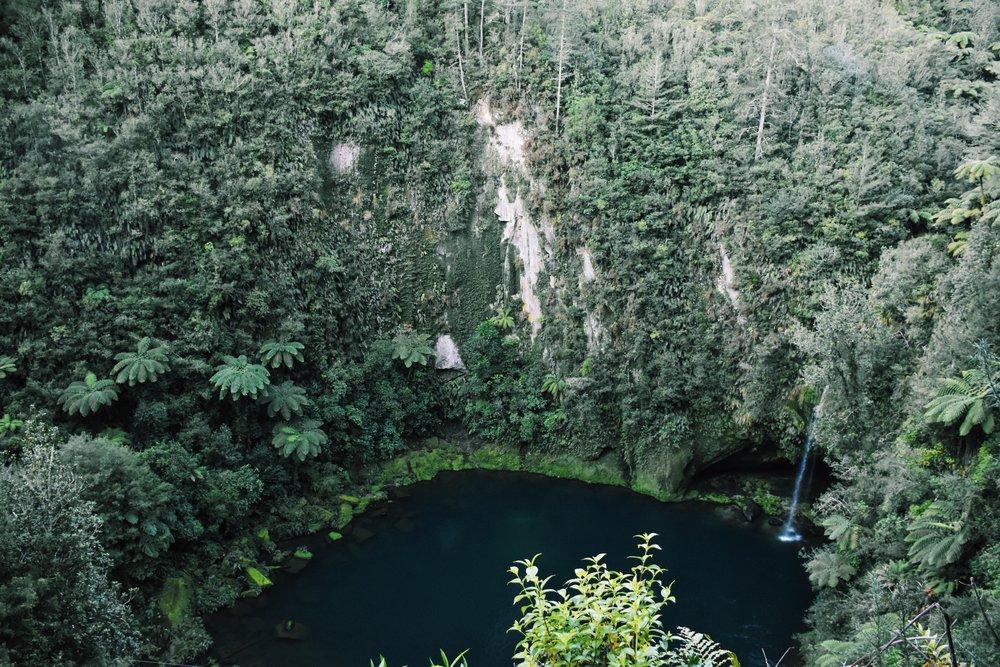 Omanawa Falls, 2016
