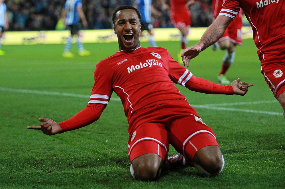 Nicky Maynard of Cardiff City celebrates scoring