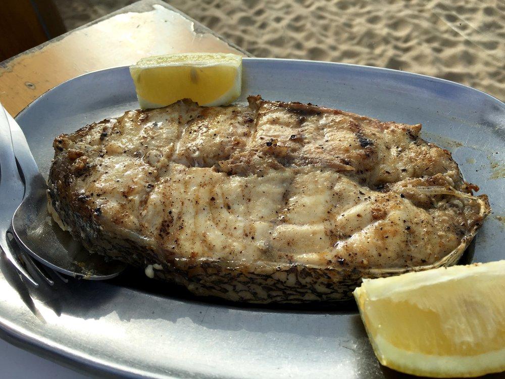 cherne (grouper)
