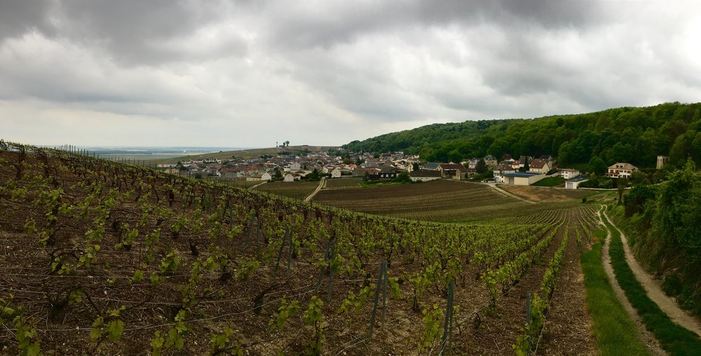 Verzenay, Champagne