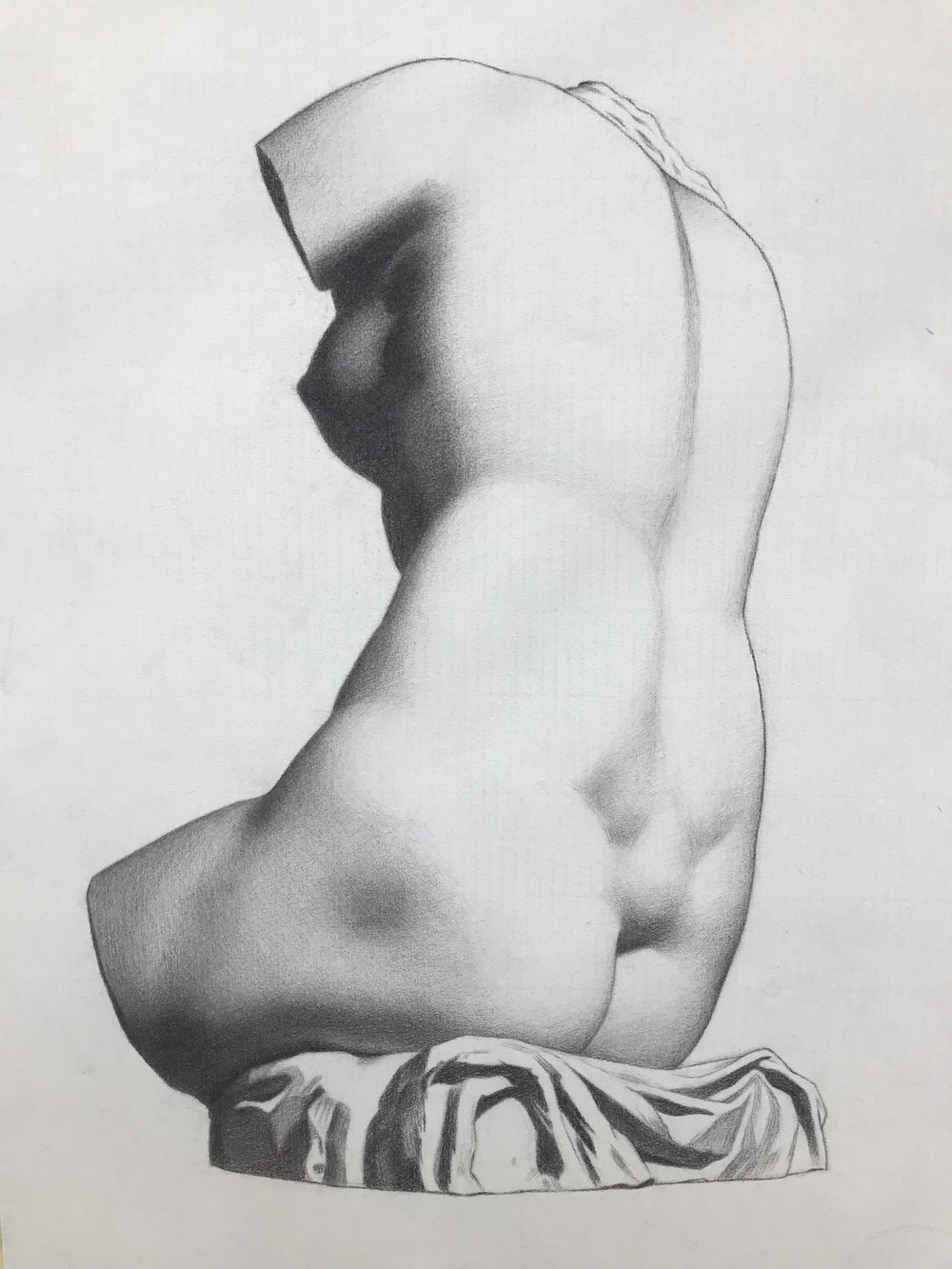 Venus Bargue copy