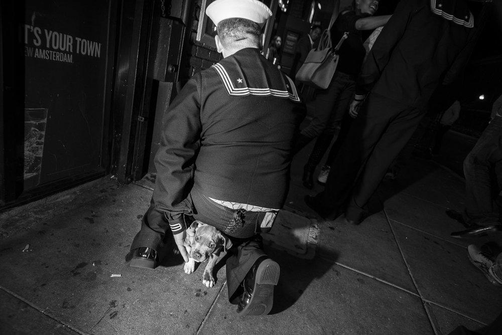Sailor with a Puppy, San Francisco CA, October 2016