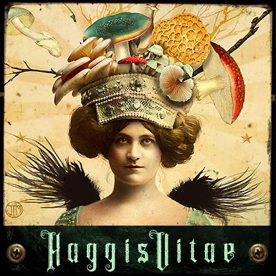 HaggisVitae Studios