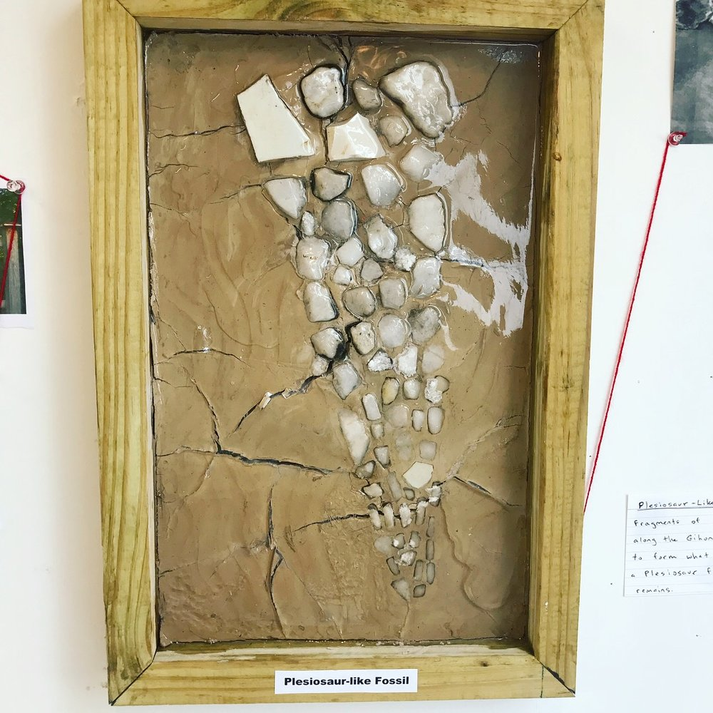 Fragments of a plesiosaur-like fossil found along the shoreline that was reconstructed in the studio-lab