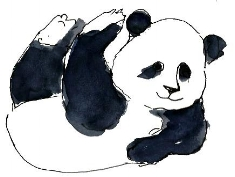Panda de pernas para o ar.jpg